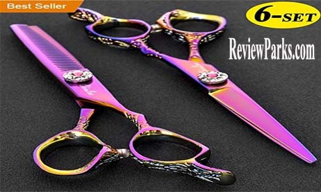 "Chiulan 6"" – Best Selling Shears with Beautiful Looks"